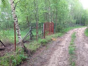 Ворота и забор из сетки-рабицы